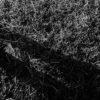miniwieliczka